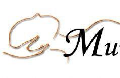 Mum's Wellness Massage & Salon Pte Ltd Photos