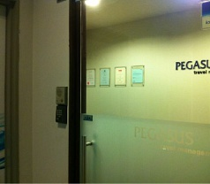 Pegasus Travel Management Pte Ltd Photos
