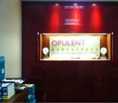Opulent Techno Pte Ltd Photos