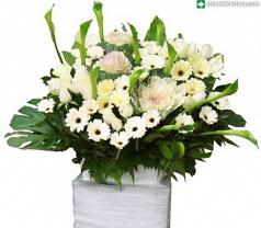 Flowers Concept Photos
