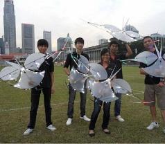 Go Fly Kite Photos