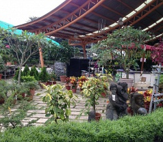 Island Landscape & Nursery Pte Ltd Photos