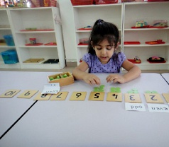 The Montessori Place of Learning Photos
