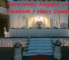 Hairy Canopy Services Photos
