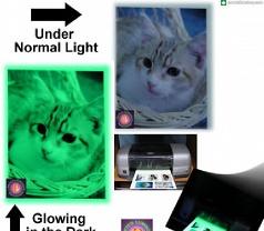 Pete's Luminous Creations Photos