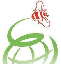 Honeyworld Holidays Pte Ltd Photos