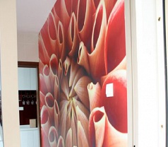 Curtain Company Pte Ltd (The)  Photos