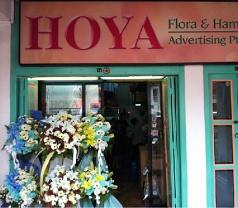 Hoya Flora & Hampers Photos