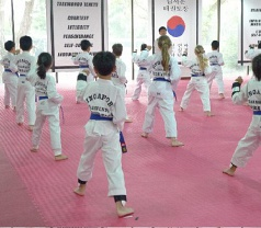 J H Kim Taekwondo Institute Singapore Photos