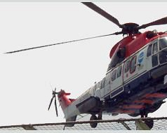 D & M Aviation Services Photos