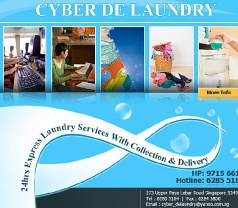 Cyber De Laundry Photos