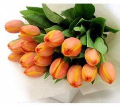 Everydayflowers.com.sg Photos