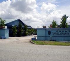 Tung-hu Aquarium Trading Photos