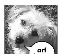Arf!design Photos
