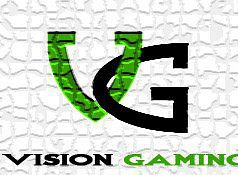 Vision Gaming Photos
