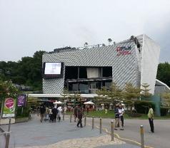 iFly Singapore Photos