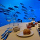Dining at Singapore  Ocean restaurant by cat cora