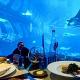 Underwater Aquarium Dining Experience Resort World Sentosa