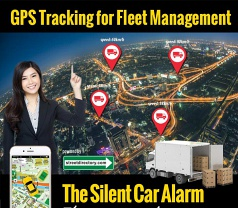 The Silent Car Alarm Photos