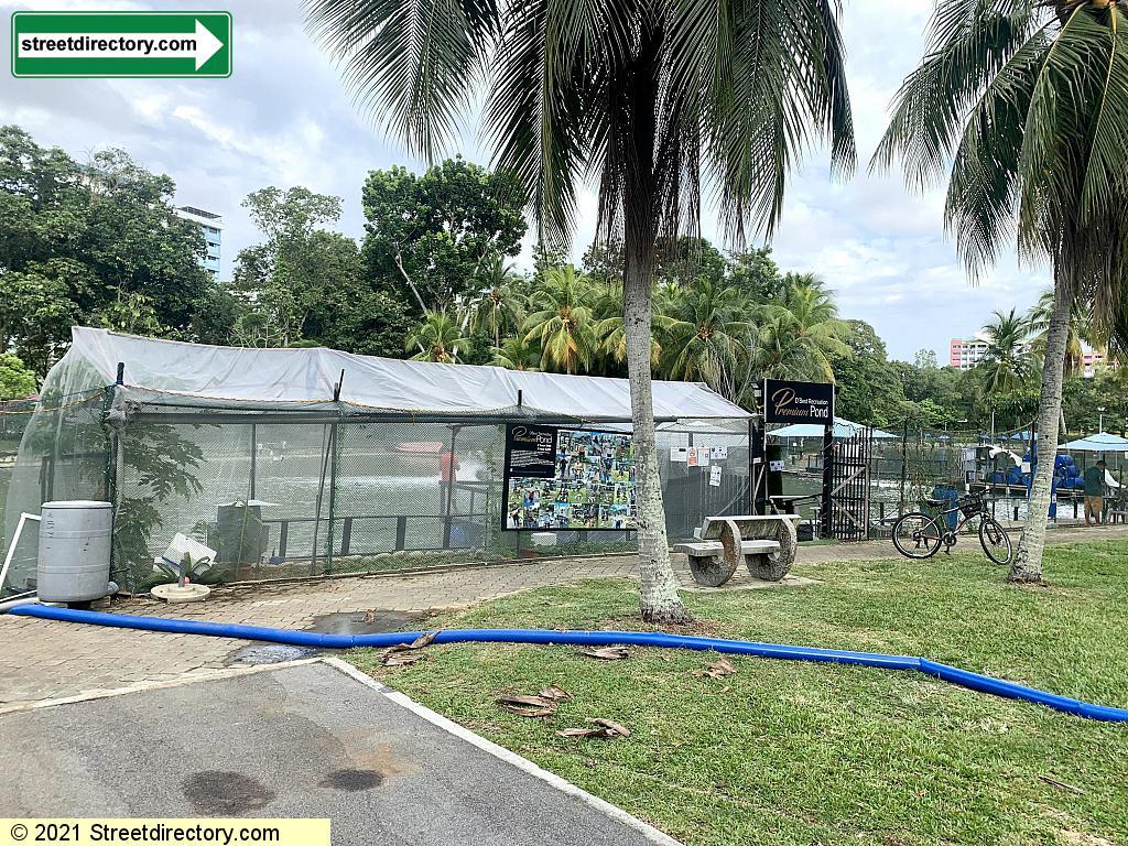 Prawning Premium Pond - Pasir Ris Town Park